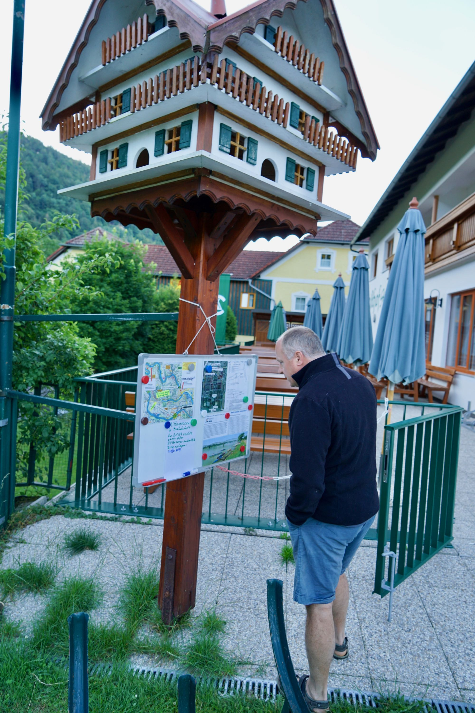 Sonntag, 1. Juli 2018 63. TID, Station INZELL in der Schlögener Schlinge, km2182,5 rechts