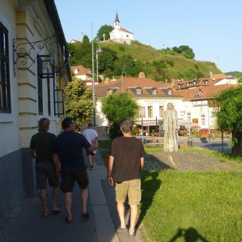 20190611_bis_16_Mosoni_und_Ungarische_Donau - 156