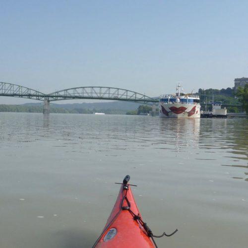 20190611_bis_16_Mosoni_und_Ungarische_Donau - 186