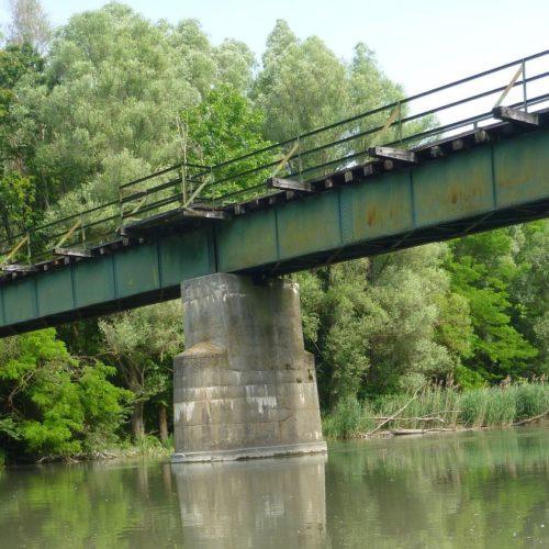 20190611_bis_16_Mosoni_und_Ungarische_Donau - 42